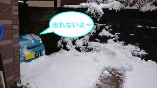 先週の雪のサムネイル画像