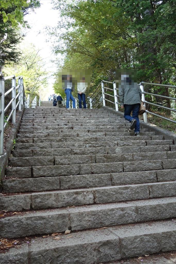 http://yanaso.lolipop.jp/NOTE_E12/blog/2019/04/30/DSC06276.jpg