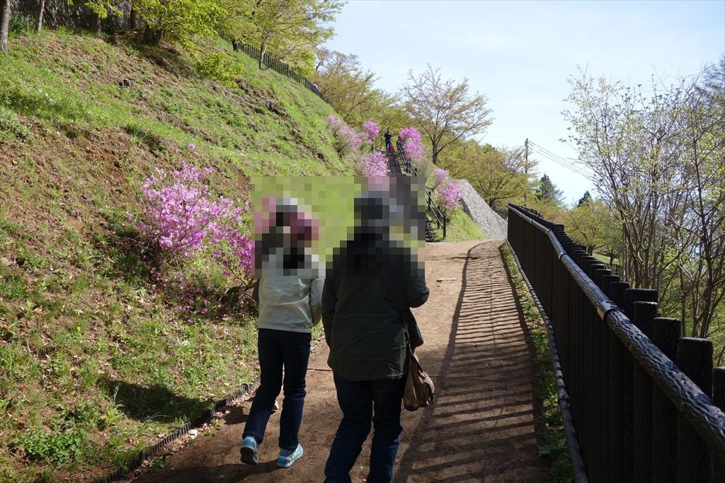 http://yanaso.lolipop.jp/NOTE_E12/blog/2019/04/30/DSC06277.jpg