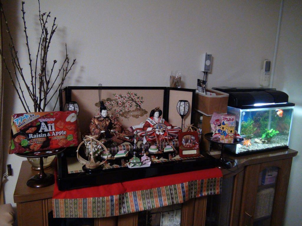 http://yanaso.lolipop.jp/aqua/2012/03/04/DSC02504.jpg