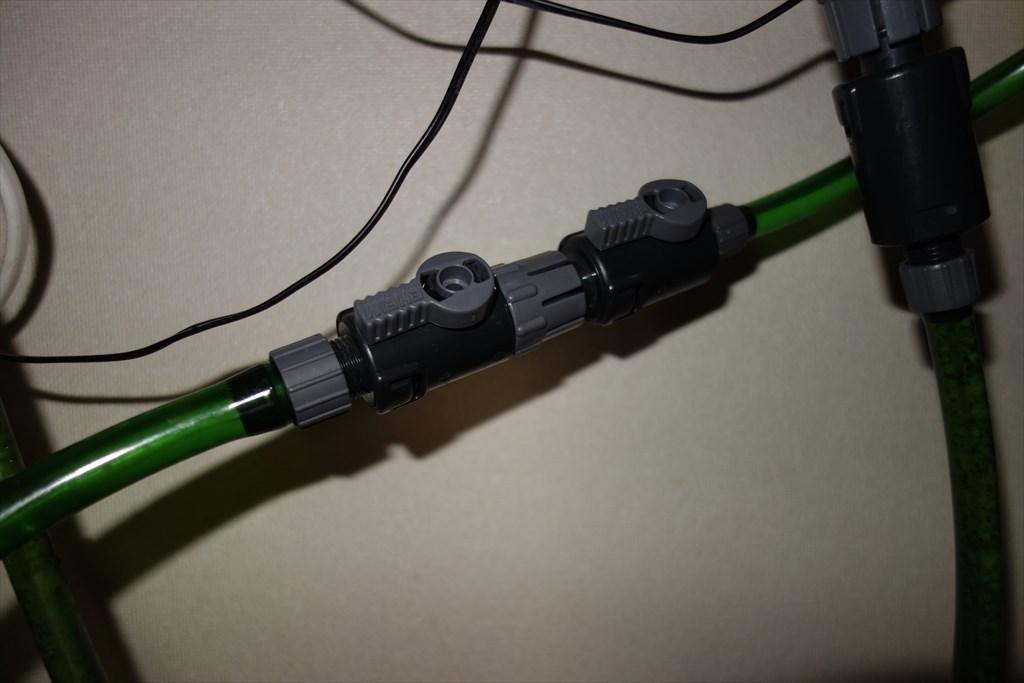 http://yanaso.lolipop.jp/aqua/DSC03062.jpg